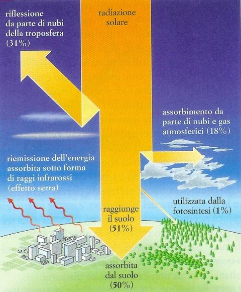 Il Sole: l'eterna sfida fra gravità e forze nucleari