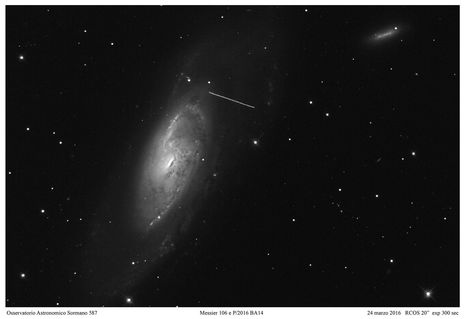 Cometa P2016 BA14