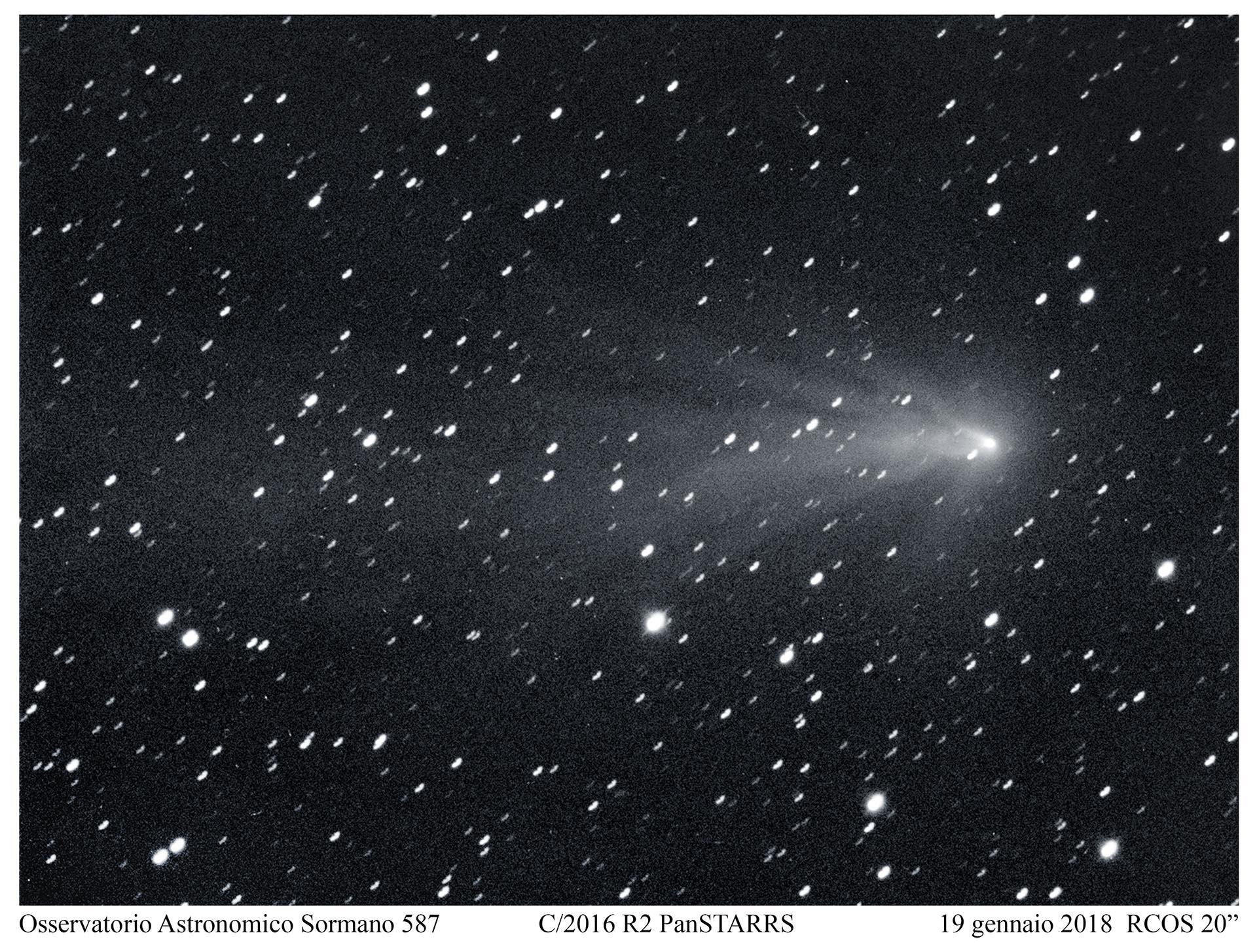 C2016 R2: la cometa medusa