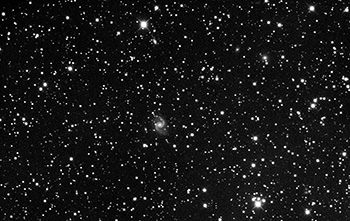 Una Supernova amatoriale in UGC 11919