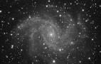 Supernova da re