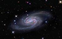 NGC 2903: Una corona per il Leone