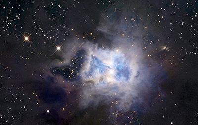 Iris Nebula, bellezza ereditaria