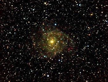 Galassia spirale IC 342 nella Giraffa